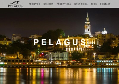 izrada web prodavnice-pelagus